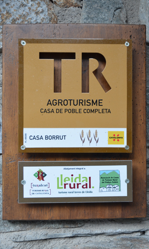 Casa Borrut Category